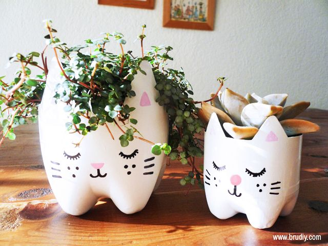 Just look at that! Image source: http://experthometips.com/2015/03/20/recycle-reuse-5-pretty-uses-for-plastic-drinks-bottles/
