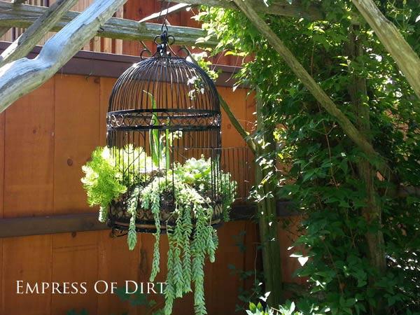 My Empress of dirt inspiration picture Image source: http://empressofdirt.net/succulent-garden-ideas/