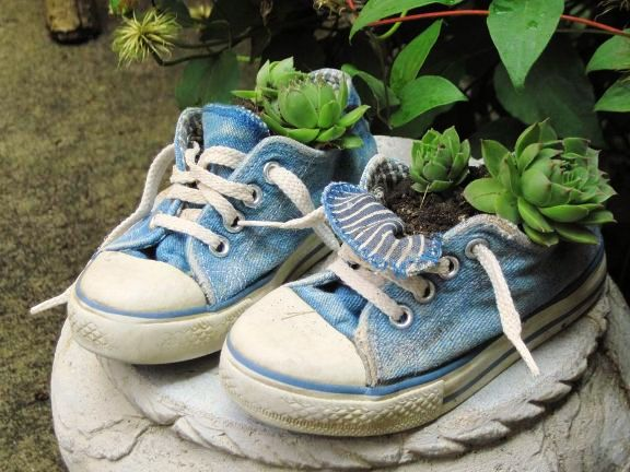 Such cuties these baby shoes are! And such a delicate powder blue. Perfect for these succulents, I could plant some bright colours in them too. Image source: http://www.fleamarketgardening.org/2013/01/29/flea-market-containers-if-it-will-hold-dirt/