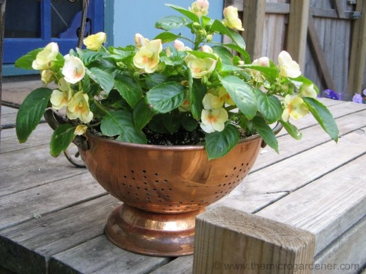 Look at that gorgeous copper strainer! It would be a crime to cover this up with any paint. Such a stunning burnished reddish gold colour to offset just about any colour you throw in it :-) Image source: http://themicrogardener.com/clever-plant-container-ideas/