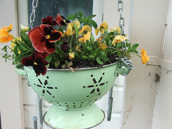 Look at how the light green paint on the strainer gives the perfect background to show off the deep red and orange and light yellow flowers! Image source: http://www.curbly.com/users/mollymc/posts/13691-roundup-7-creative-upcycled-planter-ideas