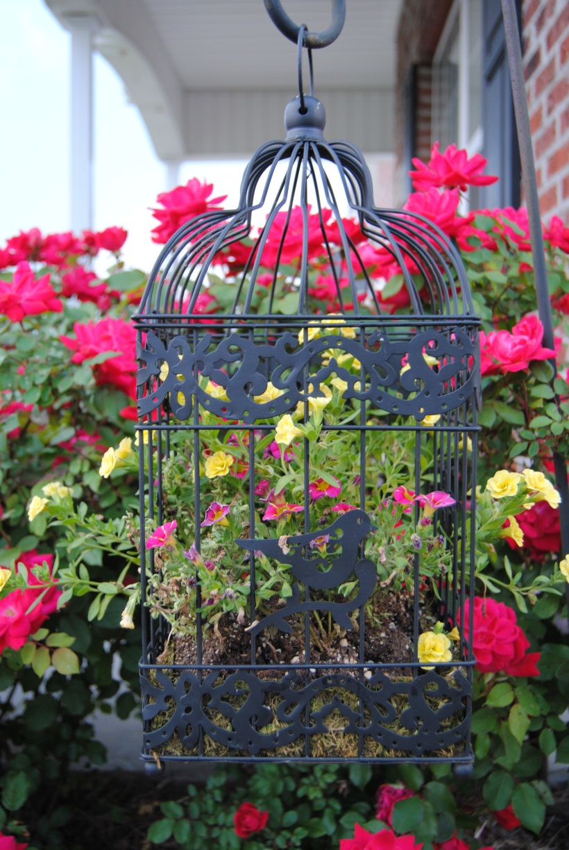 Black birdcage with hot pink and yellow flowers Image source: https://thedoublelifehousewife.wordpress.com/totally-diy/vintage-birdcage-planter/