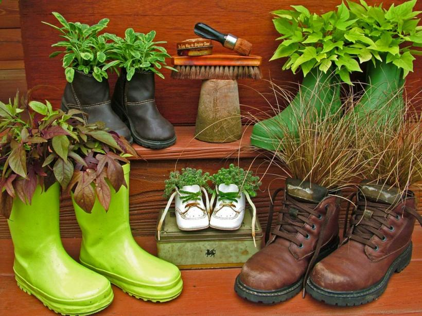 The combination of brown and lime green is so refreshing. Don't miss the black and little white shoes :) Image source: http://www.diynetwork.com/how-to/outdoors/gardening/upcycled-container-gardens-planters-and-vases-pictures